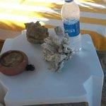 Cose da nn fare i coralli nn si toccano foto fatta al vicino d'ombrellone idiota!!!!