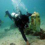 reef clean up