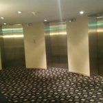 6 elevator bay