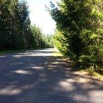 Quiet road in front of Tamanos