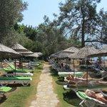 Sun City Private Beach