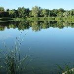 Lake & park near hotel