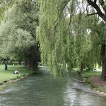 A beautiful walk along English Garden's river