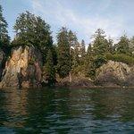 Archipelago Wildlife Cruises