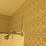 Family meadow suite...wallpaper in the bathroom coming off in many locations!