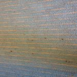 rm 210 carpet