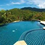 Pool & Surrounding View