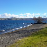 Taken on my walk by Lake Taupo, just behind the motel