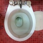 Broken off toilet seat