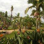 Haven på hotelområdet