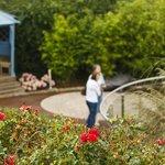 Arboretum Inspirational Gardens