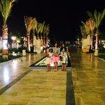 Palm Avenue at night