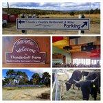 Thunderbolt Farm and Claudias Restaurant