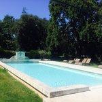 La piscine dans le parc, sous un immense chêne