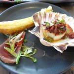 Scallop & tuna and giant chip