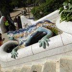 The iconic Lizard