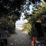 Little walk to the beach