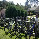 About 30 bikes available to rent for free (kids bikes also available)