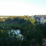 View from balcony of pond