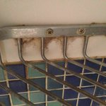 soap holder in shower mold/discolouration