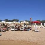 Spiaggia Hotel Althea Palace