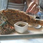 whole red snapper for two