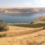 Panorama view of Columbia River Gorge from the cafe in Maryhill Museum