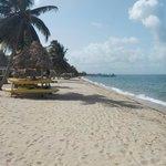 Beach and Kayaks