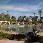 Nirvana pool...zzzz