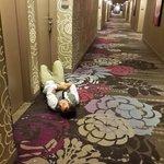 Pasillos del hotel por la noche