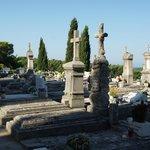 Cavtat cemetery 1