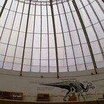 El domo del área de la era de los dinosaurios