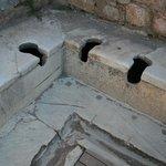 as latrinas..