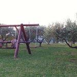 Giardino di ulivi con altalene e dondoli