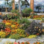 Tropical Garden in Stavanger