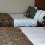 Very comfy beds