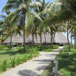 El Ranchon Restaurant by the Beach