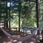 Relaxation at its finest!  Hammocks and quiet sitting areas all over grounds