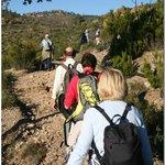 Hiking in Ramsey Canyon