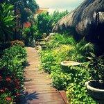 Walkway to massage rooms