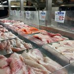Choose which piece of fish you'd like to eat