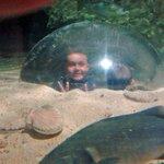Toujours un plaisir pour les enfants de passer dans la bulle.