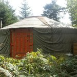 19 ft yurt most secluded