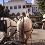 Horse Drawn carrige rides