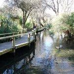 川の流れる園内