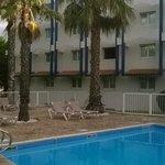 piscine et palmiers, certaines chambres ont la vue sur la piscine