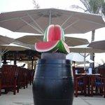 Watermelon Object