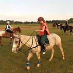 My first ride in a horse polo