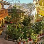 Amaru II garden separating the rooms