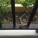 drug pipe on our balcony when we arrived